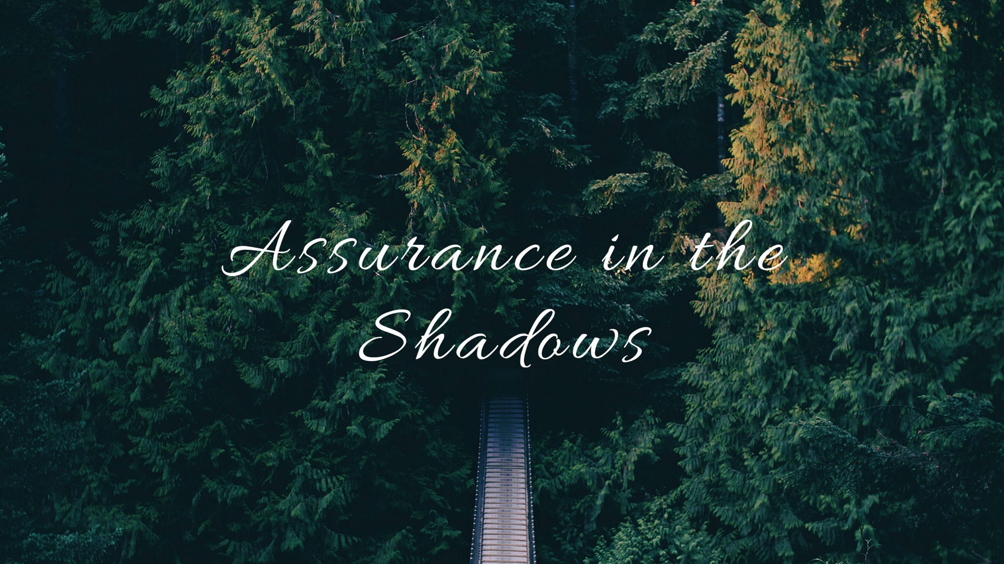Assurance in the Shadows Image