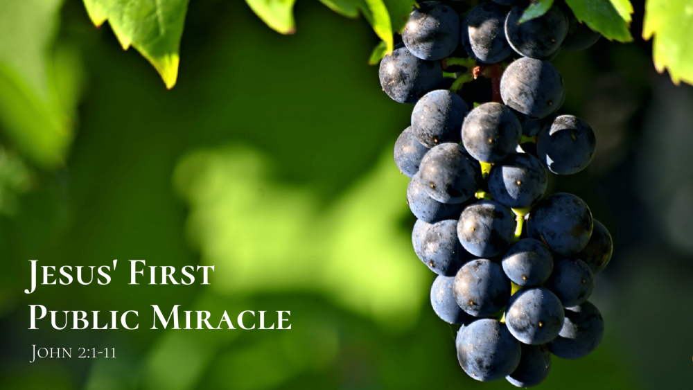 Jesus\' First Public Miracle Image