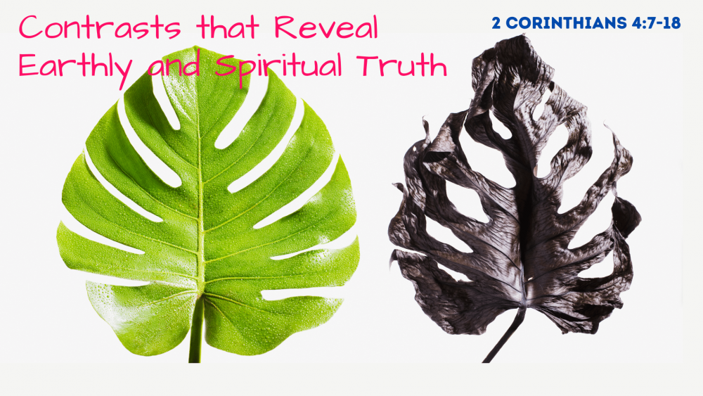 Contrasts That Reveal Earthly and Spiritual Truth Image