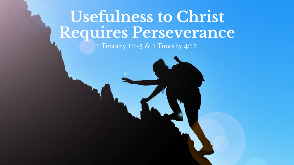 Usefulness to Christ Requires Perseverance Image