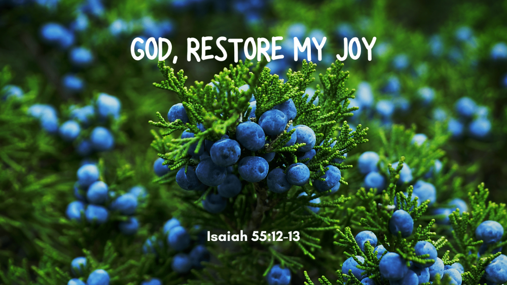 God, Restore My Joy Image