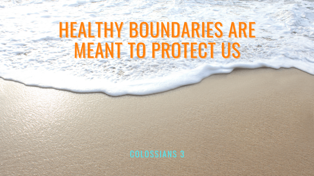 Healthy Boundaries are Meant to Protect Us Image